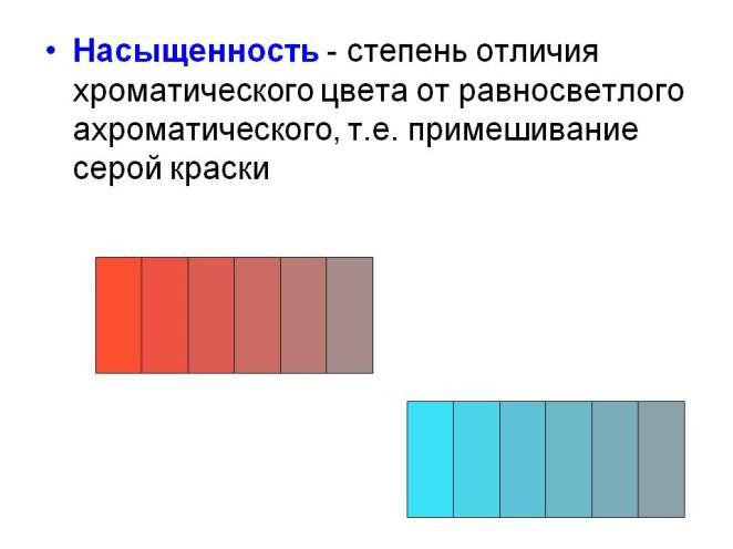 color3.jpg