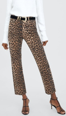4-leopard-1